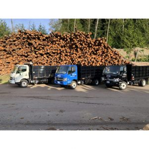 Vashon Island Firewood Delivery 1