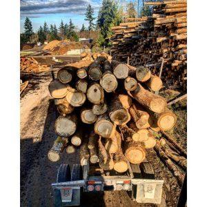 Vashon Island Firewood Yard 1