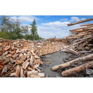 Vashon Island Firewood Yard 2